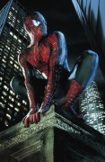 Человек Паук / Spider-Man (Тоби Магуайр, Кирстен Данст, 2002) 55ab4c467878096