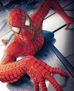 Человек Паук / Spider-Man (Тоби Магуайр, Кирстен Данст, 2002) Dee50c467878140