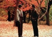 Когда Гарри встретил Салли / When Harry Met Sally... (1989) 230778471265493