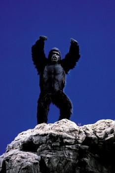 КИНГ КОНГ ЖИВ ! / King Kong lives ! (1986) Линда Гамильтон C6240c288994809