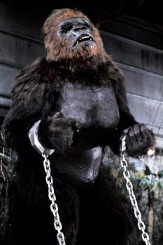 КИНГ КОНГ ЖИВ ! / King Kong lives ! (1986) Линда Гамильтон F5e75c288994591