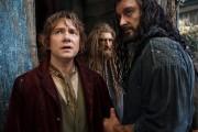Хоббит Пустошь Смауга / The Hobbit The Desolation of Smaug (2013) B29967408190131