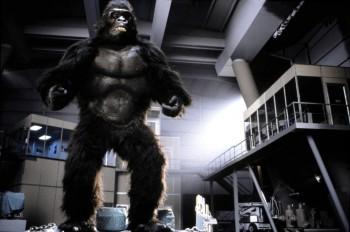 КИНГ КОНГ ЖИВ ! / King Kong lives ! (1986) Линда Гамильтон 72b0e8288994987