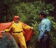 Гонки «Пушечное ядро» / The Cannonball Run (Берт Рейнолдс, Роджер Мур, Фарра Фосетт, Джеки Чан, 1981)  Dbc5c1418198022
