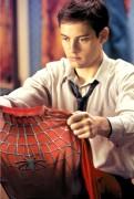 Человек Паук / Spider-Man (Тоби Магуайр, Кирстен Данст, 2002) 666fe9307790221