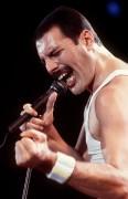 Queen и Freddie Mercury 499640338229605