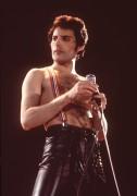 Queen и Freddie Mercury B5f5d2338229611