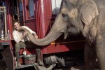 Water for Elephants : Photos  + Vidéos du tournage... - Page 11 B99a81114156551