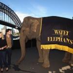 Conférence de Presse WFE à Sydney - 6 mai 2011  9eb6fa131052984