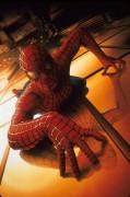 Человек Паук / Spider-Man (Тоби Магуайр, Кирстен Данст, 2002) 289b9a307790222
