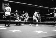 Рокки / Rocky (Сильвестр Сталлоне, 1976) 868cb5344947457