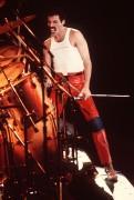 Queen и Freddie Mercury 9e3b19338229612