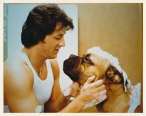 Рокки 2 / Rocky II (Сильвестр Сталлоне, 1979) 7b3244344436665