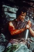 Рэмбо: Первая кровь / First Blood (Сильвестр Сталлоне, 1982) 0e20d8391406145