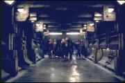 Люди Икс 2 / X-Men 2 (Хью Джекман, Холли Берри, Патрик Стюарт, Иэн МакКеллен, Фамке Янссен, Джеймс Марсден, Ребекка Ромейн, Келли Ху, 2003) 7a1c06334089411