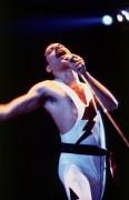 Queen и Freddie Mercury 81d8bf338229620