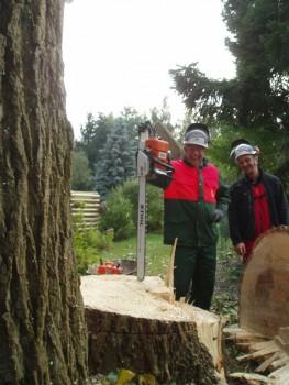 Izrada ogrijevnog drva - Page 13 F7a0c8462708025