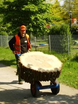 Izrada ogrijevnog drva - Page 13 F80abc462707991