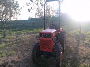 Traktori Same voćarski D543be442368119