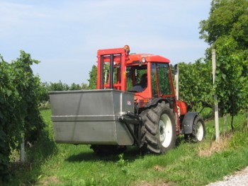 Traktorski viljuškari & vilice F4f909443816204