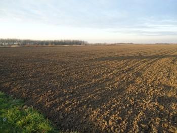 Sjetva pšenice 9e7643445455948