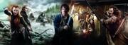 Хоббит Пустошь Смауга / The Hobbit The Desolation of Smaug (2013) 27cc8e451035316