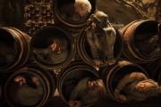 Хоббит Пустошь Смауга / The Hobbit The Desolation of Smaug (2013) 6959f2451034210