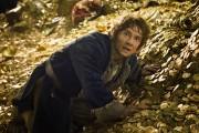 Хоббит Пустошь Смауга / The Hobbit The Desolation of Smaug (2013) 82e1c8451035633