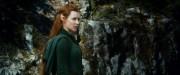 Хоббит Пустошь Смауга / The Hobbit The Desolation of Smaug (2013) Ea5350451034285