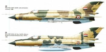The legendary MiG-21 Bca865477381549