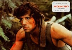 Рэмбо: Первая кровь / First Blood (Сильвестр Сталлоне, 1982) 8033a3479820251