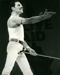 Queen и Freddie Mercury 3beca4516068079
