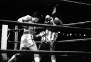Рокки / Rocky (Сильвестр Сталлоне, 1976) 5609f4518305284
