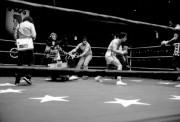 Рокки / Rocky (Сильвестр Сталлоне, 1976) 6e8c6e518305652