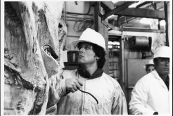 Рокки 2 / Rocky II (Сильвестр Сталлоне, 1979) 7b6adf479440705