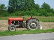 Traktor IMT 533  & 539 opća tema tema traktora E9abd2485411903