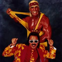 Халк Хоган (Hulk Hogan) разные фото / various photos  712cca490422770