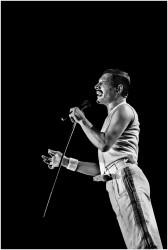 Queen и Freddie Mercury 9c6851516068175