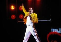Queen и Freddie Mercury A994d9516068230
