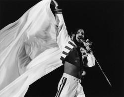 Queen и Freddie Mercury F7d242516068101