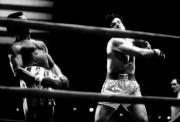 Рокки / Rocky (Сильвестр Сталлоне, 1976) 513ffa518305252