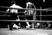 Рокки / Rocky (Сильвестр Сталлоне, 1976) 84830d518305140