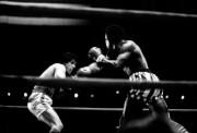 Рокки / Rocky (Сильвестр Сталлоне, 1976) Cc68f1518305262