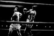 Рокки / Rocky (Сильвестр Сталлоне, 1976) D83a78518305274