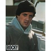 Рокки / Rocky (Сильвестр Сталлоне, 1976) 015806518346473