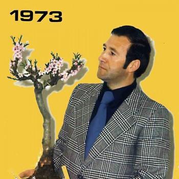 Ecco come inventai il Bonsai! 0b3dc7527821967