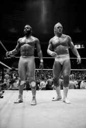 Халк Хоган (Hulk Hogan) разные фото / various photos  4bdac8540243227