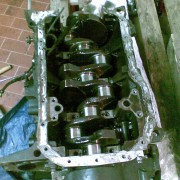 traitement Clio 16S (clio cup)+ restauration. 24f99685242766