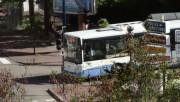 Irisbus Citélis S n° 113 0e9af7145526118