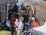 Water for Elephants : Photos  + Vidéos du tournage... - Page 12 F0e1ac115368183